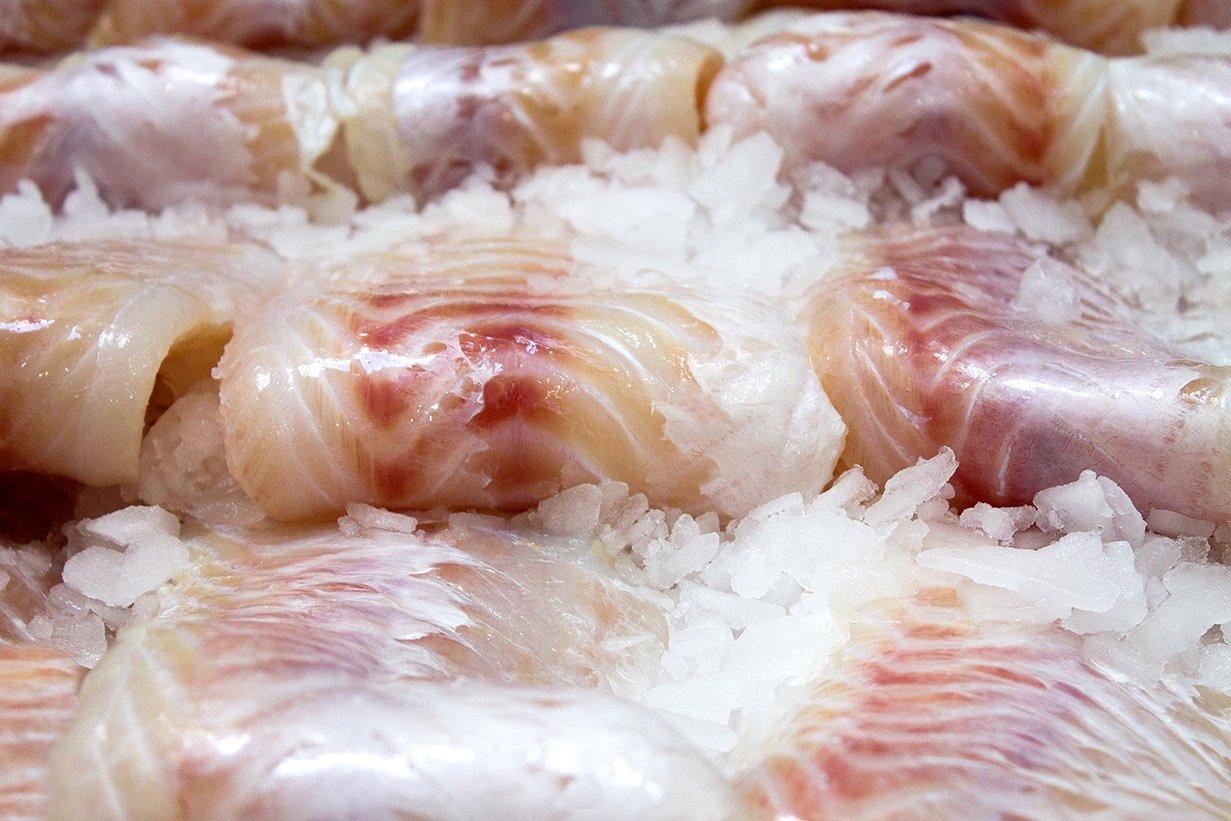 pesce-21931